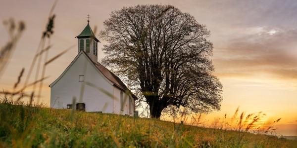 교회론이 이끌어가는 교회